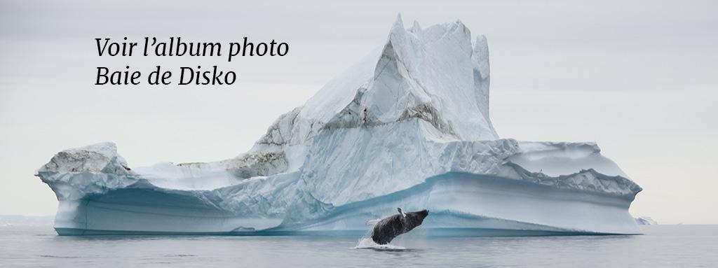 Iceberg et Baleine dans la baie de Disko