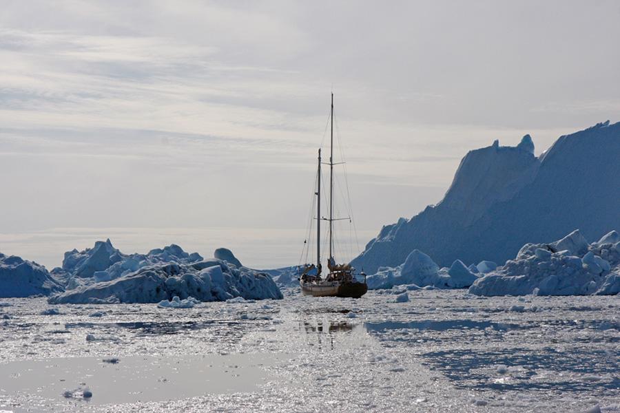 La louise à Isfjord