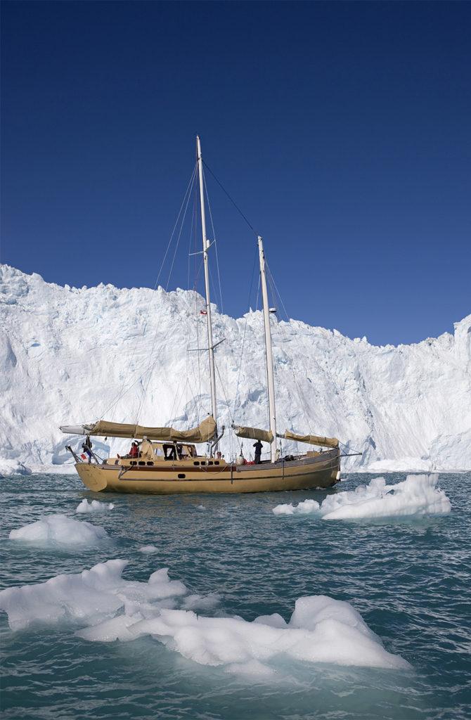 La ouise au Groenland