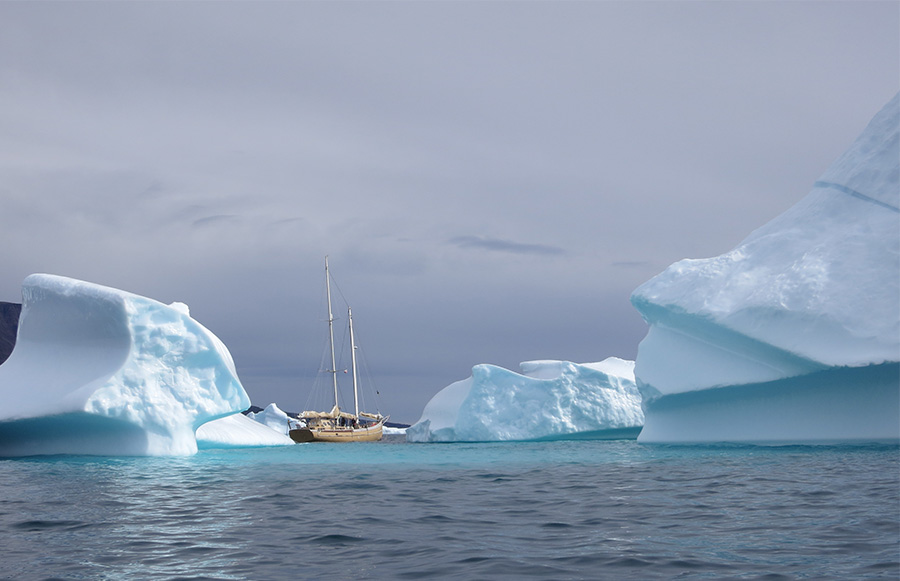 La Louise à travers les Icebergs
